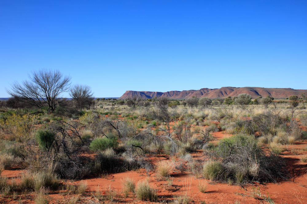 Kings Canyon (12 of 19)
