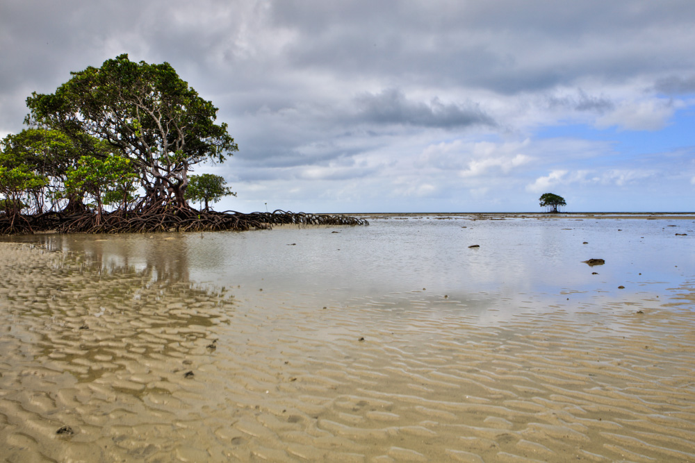 Cowie Beach-4486