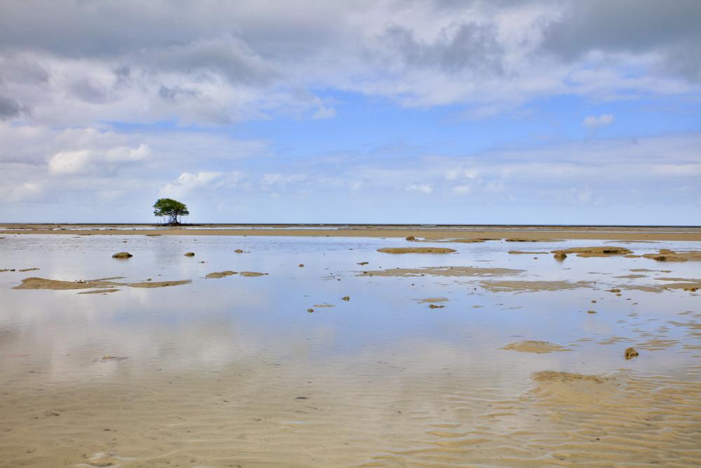 Cowie Beach-4489