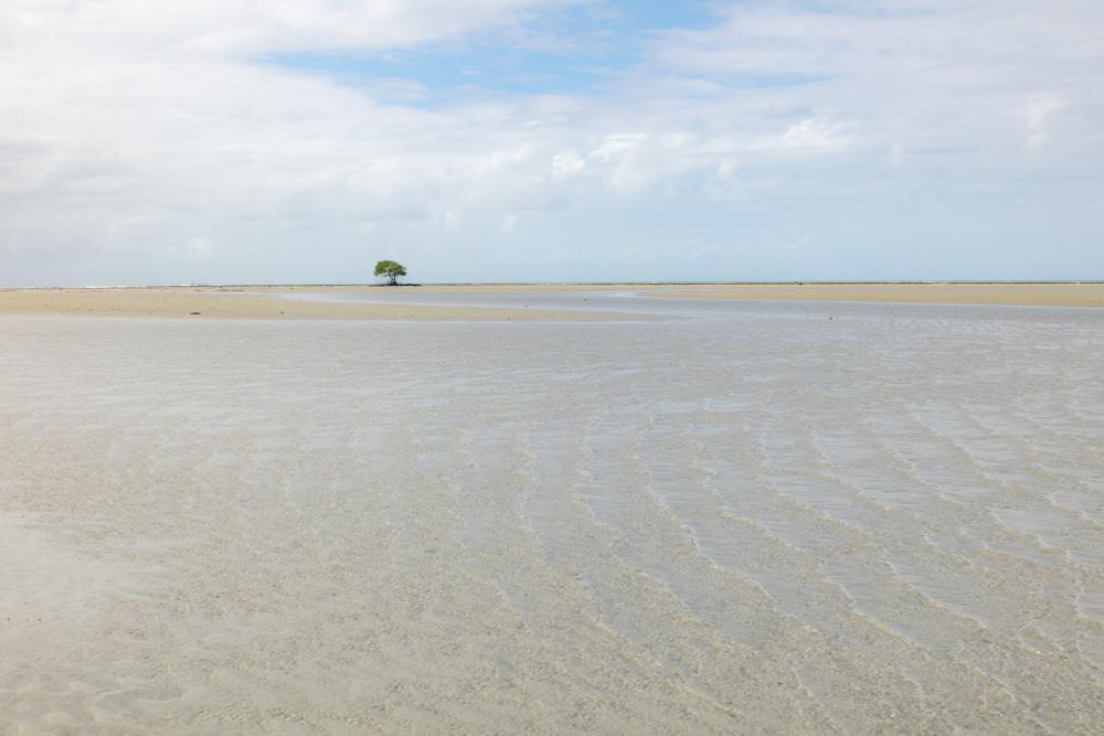 Cowie Beach-4521