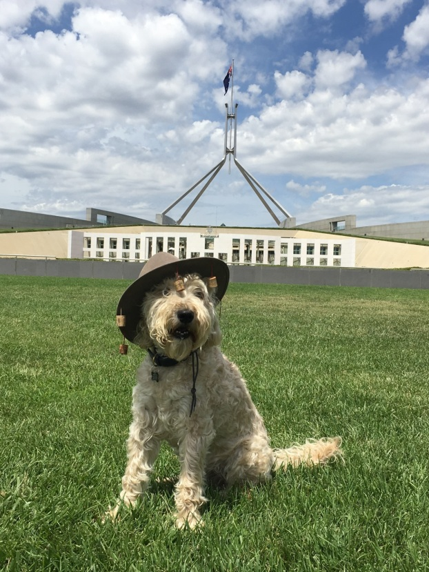 bailey-canberra