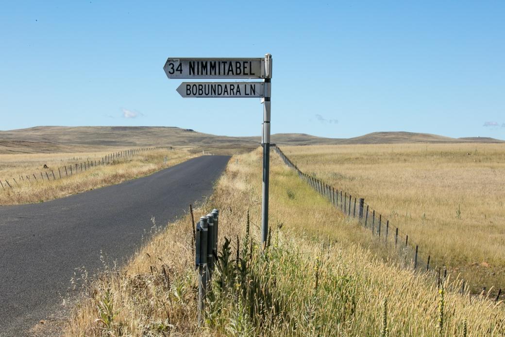 monaro-blog-38