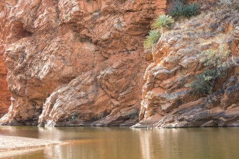 Ellery Creek, Alice Springs